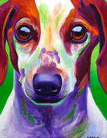 Cooper by dawgart