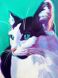Kitty by dawgart