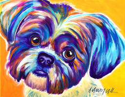 Inquisitive Shih by dawgart