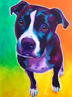 Truman by dawgart