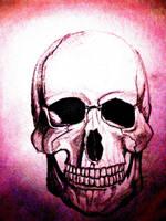 Skull by AkumaRyoshi