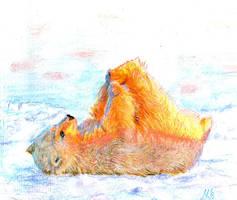 Target polar bear by zeldis
