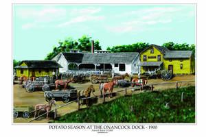 Potato Season at the Onancock Wharf - 1900 by Belote-Art