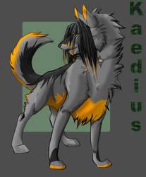Kaedius by Khanie