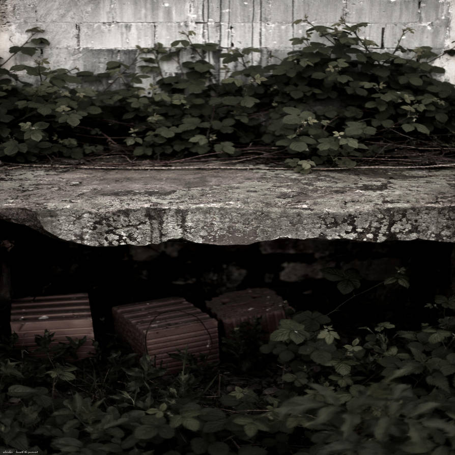 Beneath the Pavement by scheinbar