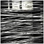 stripes in the foreground by scheinbar