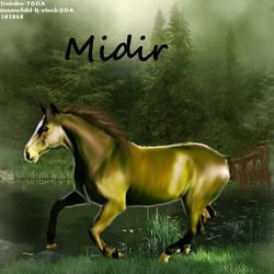 Midir by midholly