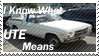 I Know What UTE Means Stamp by shadows0le