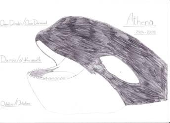 Athena (2004-2009) by RaphKeiko