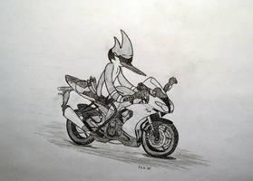 Cool Bike Crusin' by Phil-R