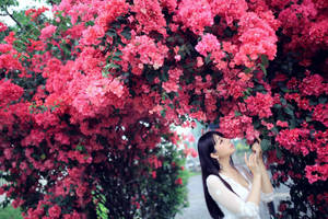 Paper Flower by BottleTsai