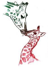 Giraffes by radkat23