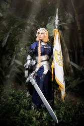 Commander of the French Army by Akarui-Sakura