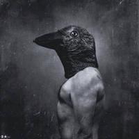 raven by dasTOK