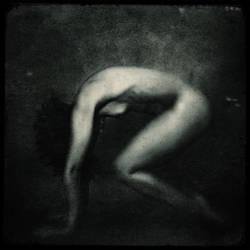 Image by dasTOK