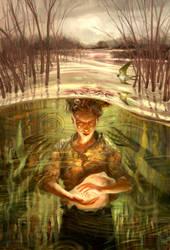 Marsh by Jon-Foster