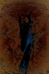 Dark Transformation by Soltis