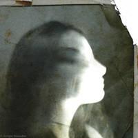 l'assertive by Migrena
