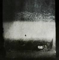 winter solitude by Migrena