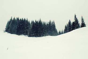 winter wonder.blend by Migrena
