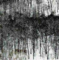 winter's dark rust by Migrena