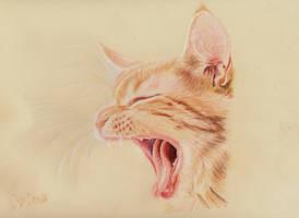 sooo tired... by Ileina