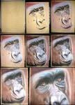 Gorilla WIP by Ileina