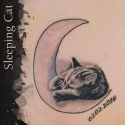 Sleeping Cat by Ileina