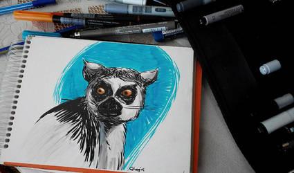 lemur by 852
