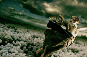 Medusa by EltonFernandes