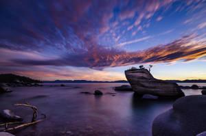 Bonsai Rock by prateekverma23