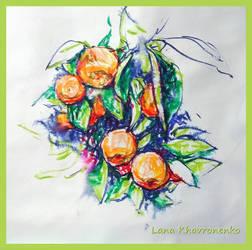 Mandarins - Oranges by LORETANA