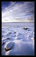 Frozen shore by Bavenmark