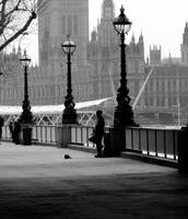 london VIII by devllaa