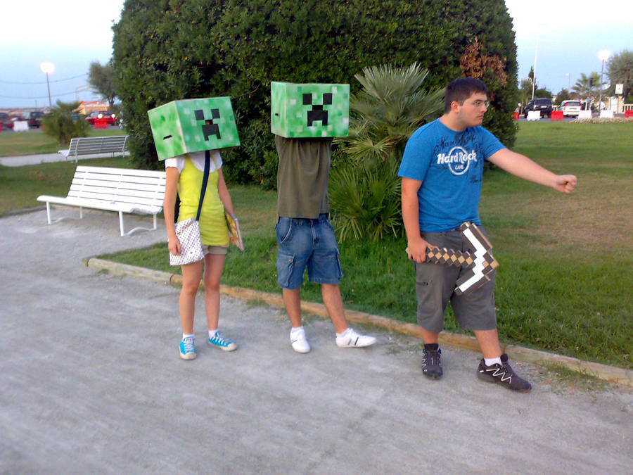 Minecraft Cosplay Riminicomics by zinghi