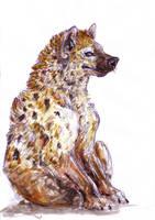 Hyena by branwolf