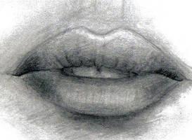 Megan Fox's Lips by Arikaiden