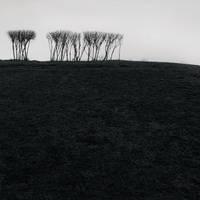 Poklonnaya Hill, Study 1 by kapanaga