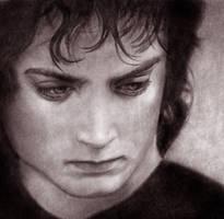 Frodo II by Fereshteh