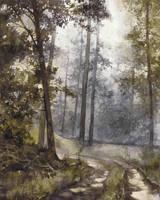 wet morning in the forest by Katarzyna-Kmiecik