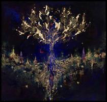 Hymnodia wieczorna by Versatis