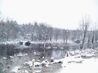 Snowy Swamp by da-joint-stock