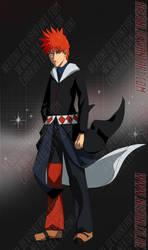 The Magical Fox by nekoni