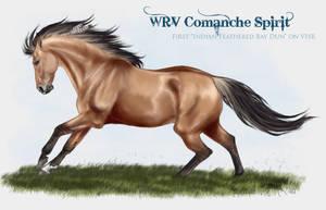VHR - Bay Dun Stallion by SheWolff