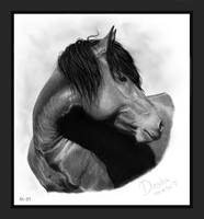 Dasha - Mustang mare by SheWolff