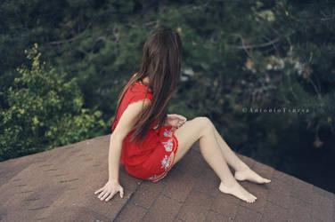 Rooftop by CameraDude