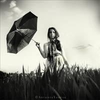 Goodbye Blue Sky by CameraDude