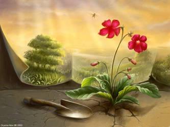 Flowers by ocarina-CD