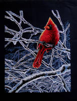 Ice cardinal by Thriin