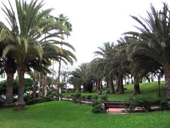 Lanzarote 2009 Hotel's garden by Zazou8